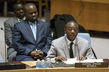 Security Council Authorizes African Union Mission in Central African Republic 0.08339329