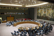 Security Council Authorizes African Union Mission in Central African Republic 0.09729217