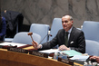 Security Council Considers Situation in Libya 4.2633004