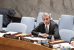 Outgoing Chairs Brief Security Council on Activities of Subsidiary Bodies 4.2633004