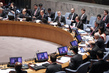 Security Council Discusses Peace and Security in Africa 4.2633004
