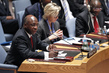 Security Council Discusses Peace and Security in Africa