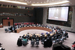 Security Council Considers Situation in Sahel