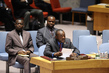 Council Discusses Situation in Central African Republic 4.2608747