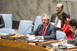 Security Council Discusses Situation in Central African Republic 1.0
