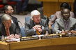 Council Discusses Situation in Central African Republic 0.05378139