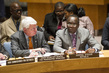 Council Discusses Situation in Central African Republic 4.259361
