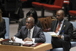 Council Discusses Situation in Central African Republic 0.061464444