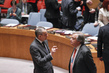 Council Discusses Situation in Central African Republic 4.2601147