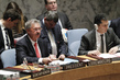 Council Discusses Situation in Central African Republic 0.06943148