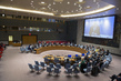Security Council Discusses Situation in Somalia 0.15811308