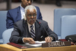 Security Council Discusses Situation in Somalia 1.0