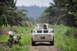 MONUSCO Conducts Joint Operation with Congolese Forces in Beni 8.105347