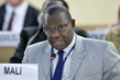Human Rights Council Discusses Report on Mali 7.0651555
