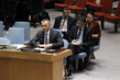 Security Council Discusses Situation in Iraq 4.2613416