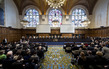 ICJ Renders Judgment in Whaling Case: Australia v. Japan 13.8042