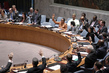 Security Council Unanimously Approves Revision of UNAMID Strategic Priorities 1.0