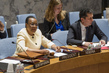 Council Discusses Situation in Mali 1.0975615