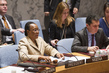 Security Council Discusses Situation in Côte d'Ivoire 2.5489159