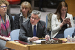 Security Council Discusses Situation in Bosnia and Herzegovina 0.8190774