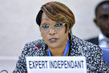 Independent Expert on Rights Situation in CAR Briefs Human Rights Council 7.030819
