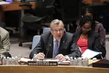 Security Council Discusses Situation in Afghanistan 1.1521337