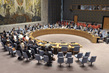 Council Discusses Peace Consolidation in West Africa 4.2415857