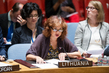 Council Considers Situation in Central African Republic