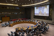 Security Council Considers Situation in Libya 4.2405314