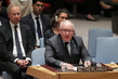 Security Council Condemns Downing of Malaysian Airliner, Calls for International Probe 4.2382665