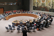 Security Council Condemns Downing of Malaysian Airliner, Calls for International Probe 4.2398624