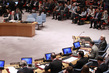 Secretary-General Briefs Security Council on Middle East 0.010073247