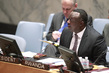 Security Council Discusses Situation in Iraq 4.2405787