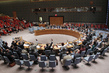 Security Council Extends Mandate of Iraq Mission 1.0