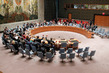 Security Council Extends Mandate of Cyprus Mission 1.0