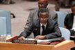 Council Considers Situation in Burundi 4.232368