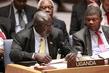 Council Discusses Situation Concerning Democratic Republic of Congo 4.2323914