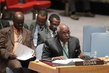 Council Discusses Situation in Darfur 0.068739414