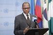 Head of Darfur Mission Briefs Press 0.63719547