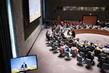Security Council Discusses Protection of Humanitarian Workers 4.2323055