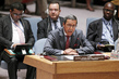 Council Discusses Situation in Central African Republic 1.0