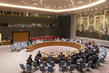 Security Council Considers Humanitarian Situation in Syria 4.2290907