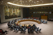 Security Council Considers Situation in Liberia 4.2308197