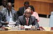 Security Council Discusses Situation in Liberia 4.229512