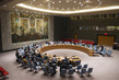 Security Council Meets to Discuss Haiti, MINUSTAH 4.2308197