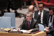 Head of UNSMIL Briefs Security Council on Situation in Libya 4.2287974