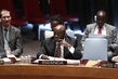 Security Council Considers Situation in Libya 4.2287974
