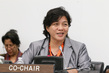 WCIP Holds Panel Discussion on Indigenous Priorities for the Post-2015 Agenda 1.2195797