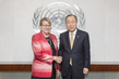Secretary-General Meets Head of UNMISS 2.8646395