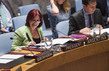 Security Council Considers Own Draft Report to Assembly 1.0